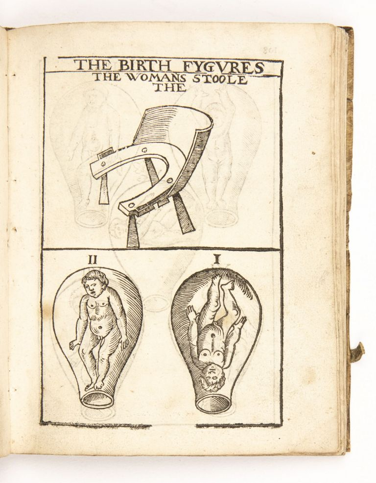 The Byrth of Mankinde, otherwise named The Woman's Book.